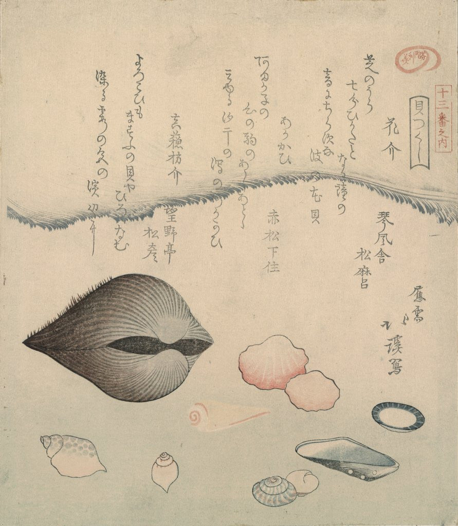 Detail of Aragai, masu�gai, anagai: clams by Totoya Hokkei