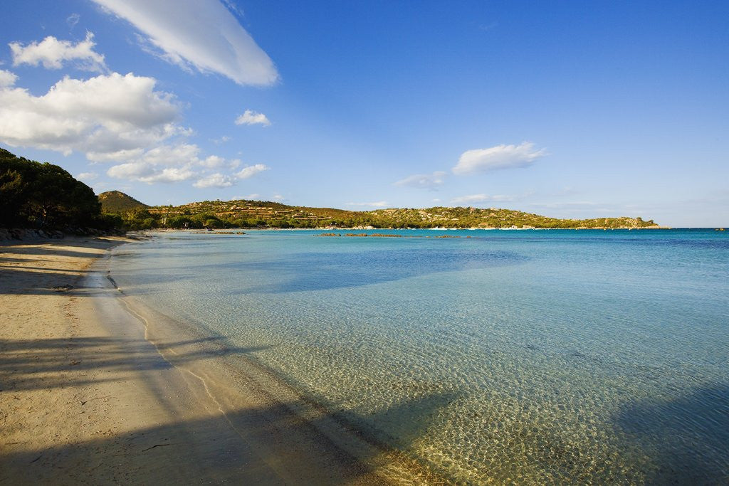 Detail of View of Santa Giulia bay, Corsica, France by Corbis