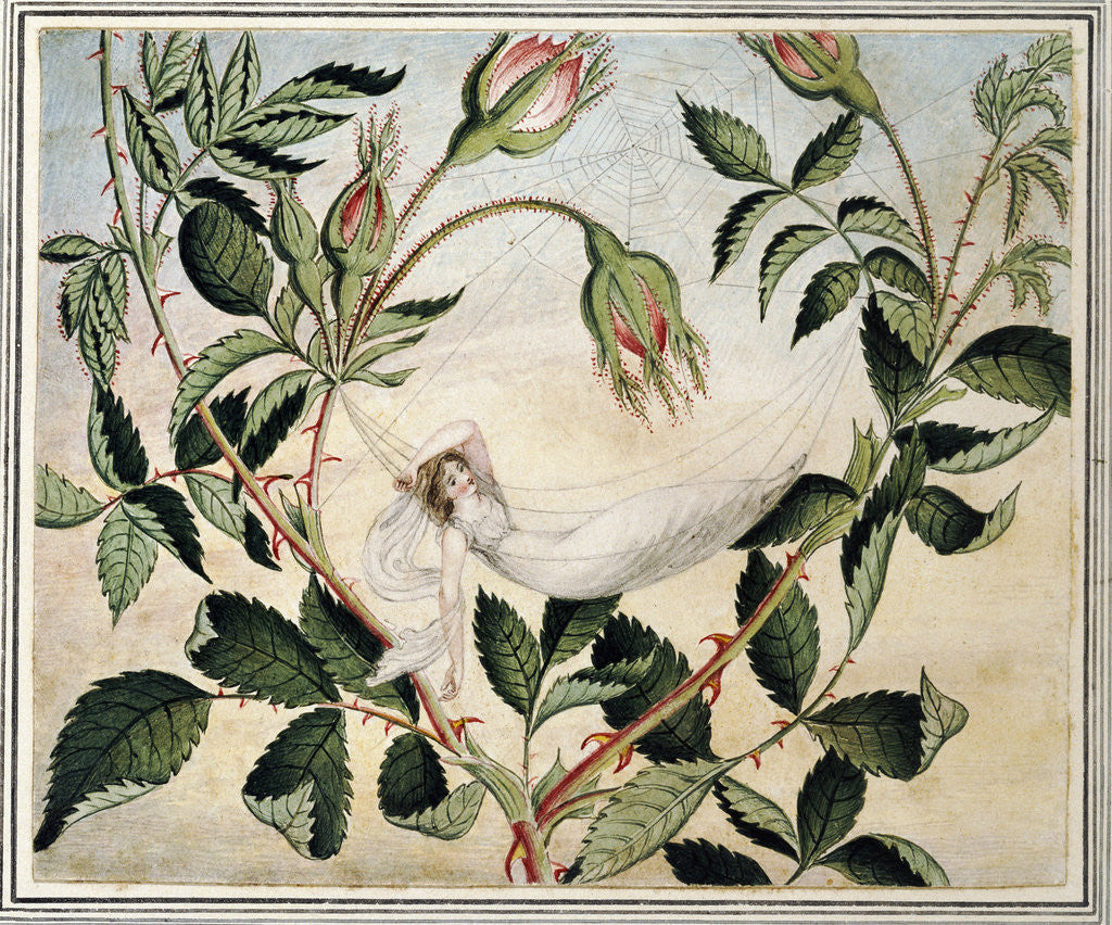 Detail of A Fairy Resting in a Hammock Spun from a Cobweb by Amelia Jane Murray