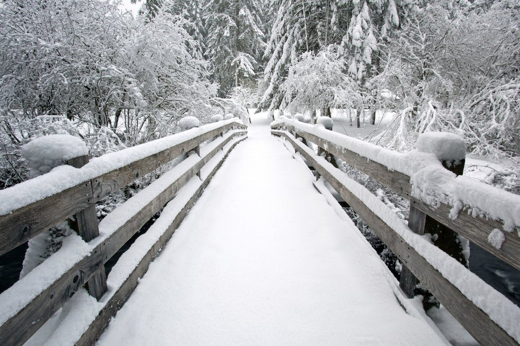 Detail of Footbridge covered in snow, Silver Falls State Park, Oregon, USA by Corbis