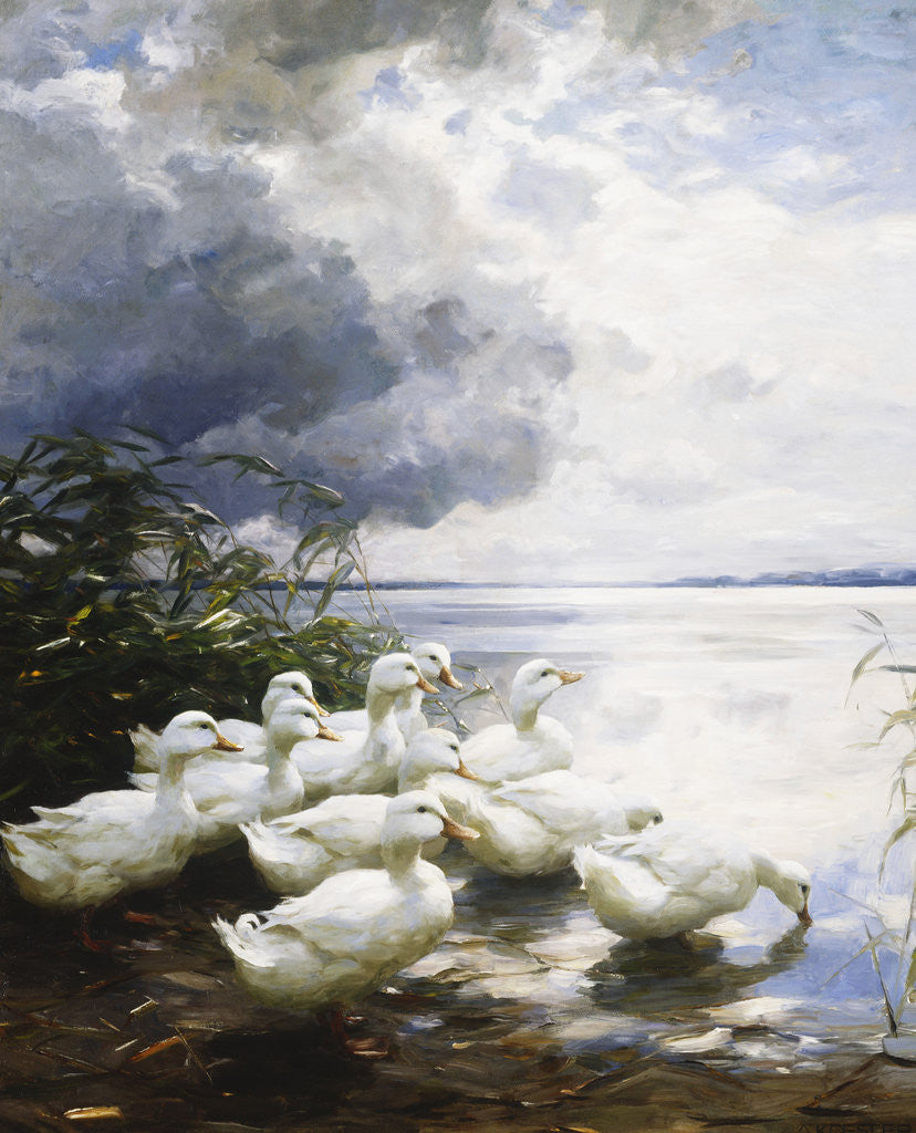 Detail of Ducks at the Lake's Edge by Alexander Koester