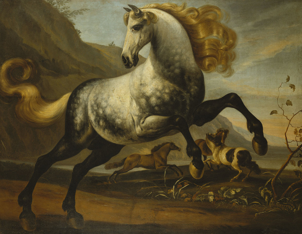 Detail of A Grey Prancing Stallion with Flowing Mane with Stallions Fighting in a Rocky Landscape by Corbis