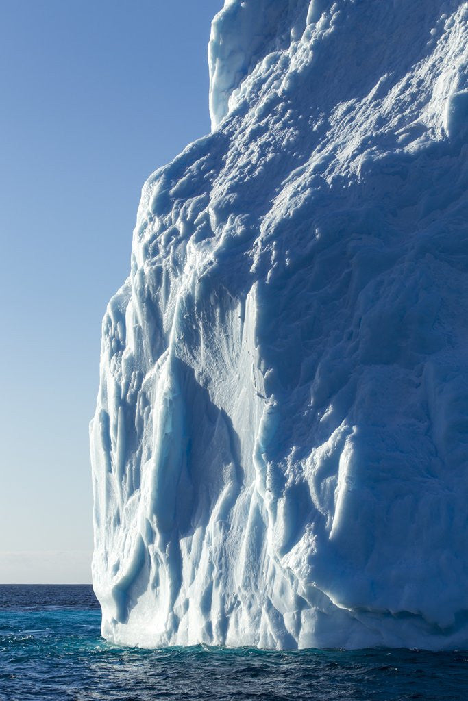 Detail of Iceberg, South Shetland Islands, Antarctica by Corbis