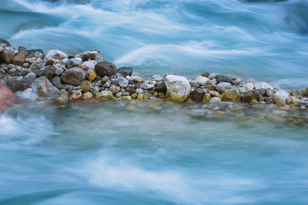 Detail of Pebbles in mountain stream, Triglav National Park, Slovenia by Corbis