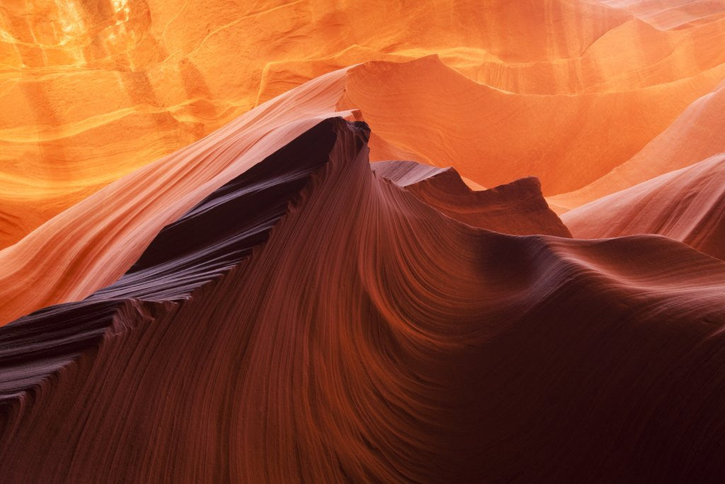 Detail of Antelope Canyon, Page, Arizona by Corbis