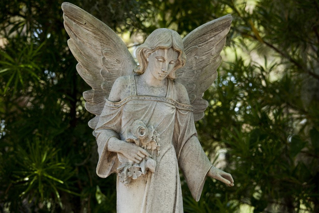 Detail of Bonaventure Cemetery, Savannah, Georgia by Corbis