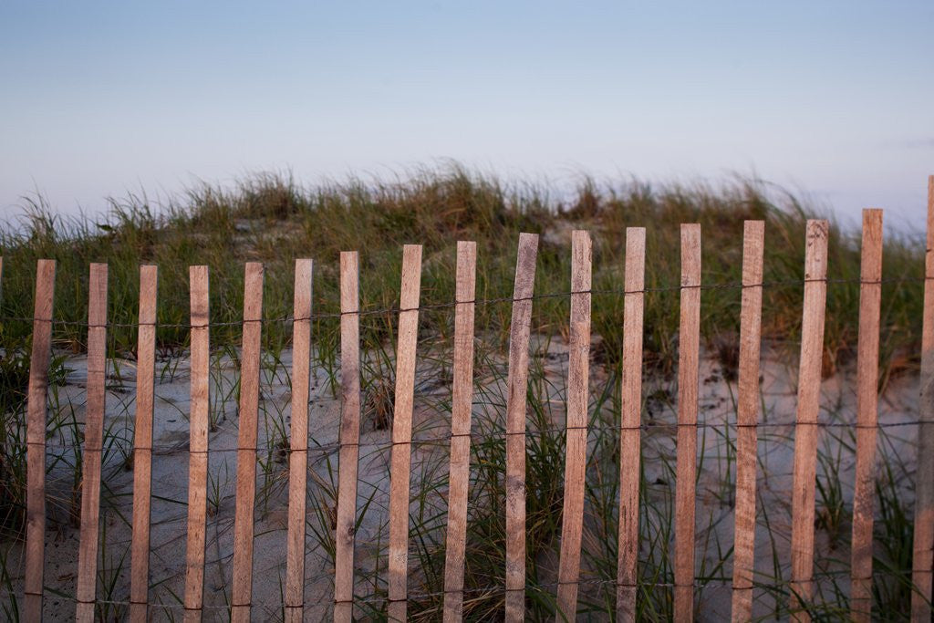 Detail of Fence in Sand Dunes, Cape Cod, Massachusetts by Corbis