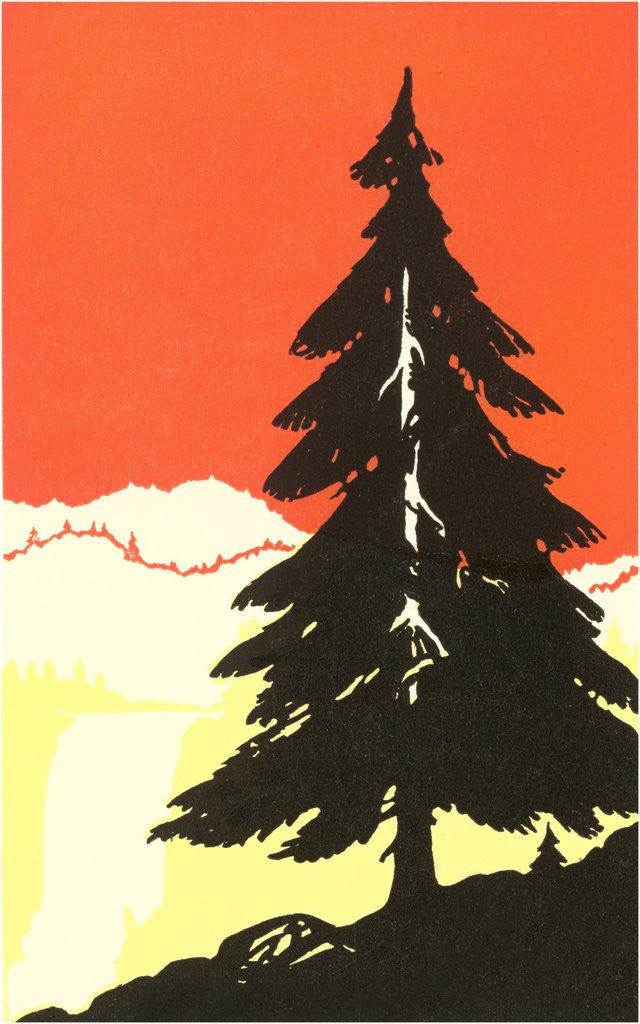 Detail of Lone Pine Silhouette by Corbis