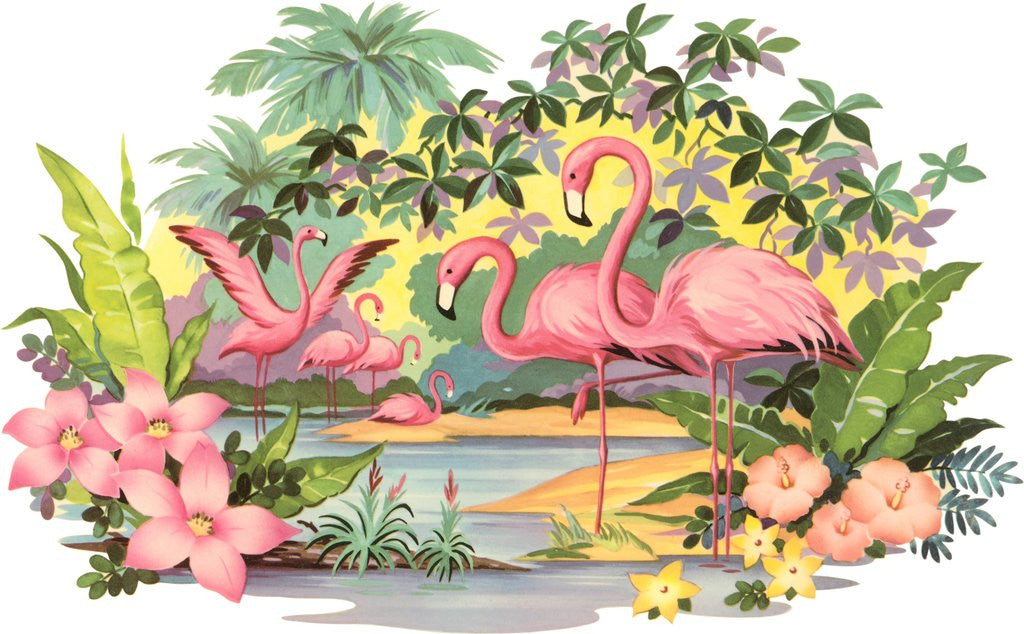 Detail of Flamingos in the Tropics by Corbis