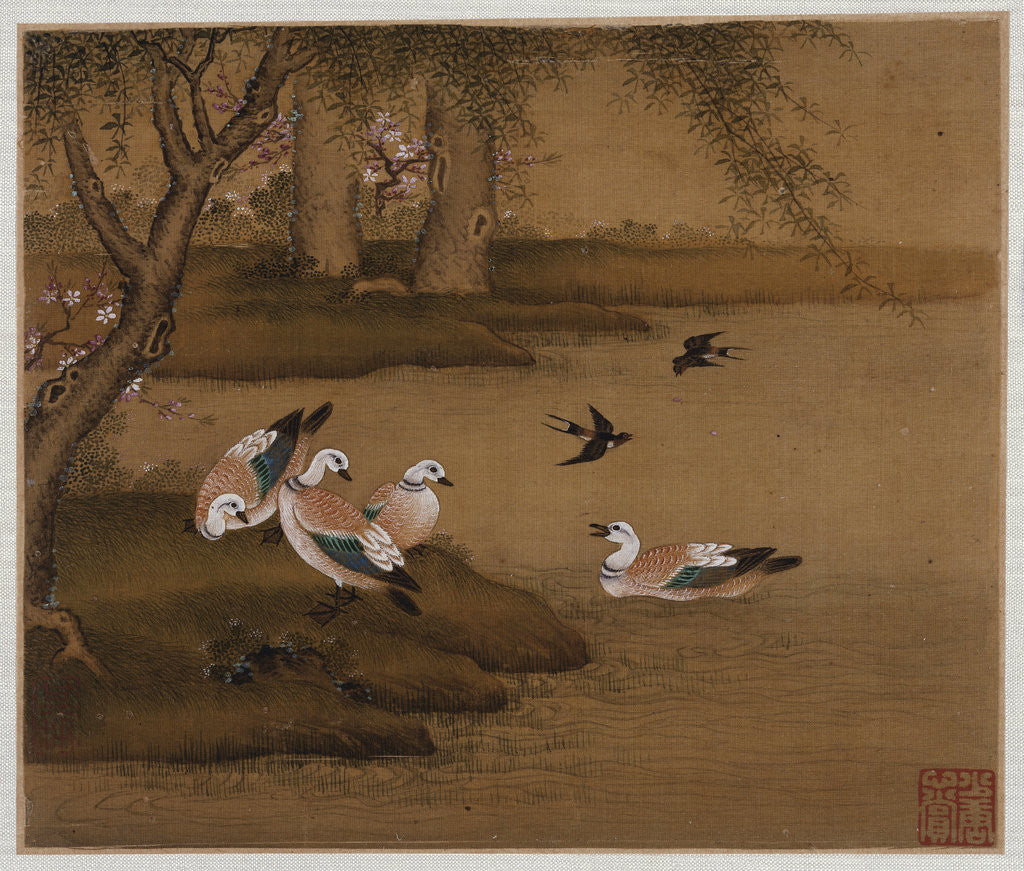 Detail of Ducks and swallows: from an album of bird paintings by Gao Qipei