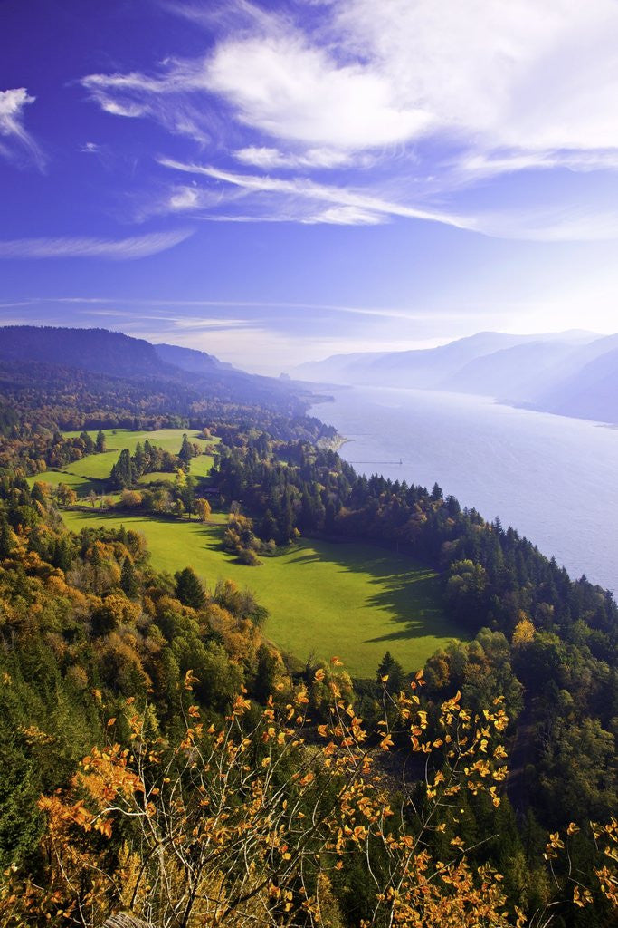 Detail of Fall colors add beauty to Cape Horn, Columbia River Gorge National Scenic Area, Washington State by Corbis