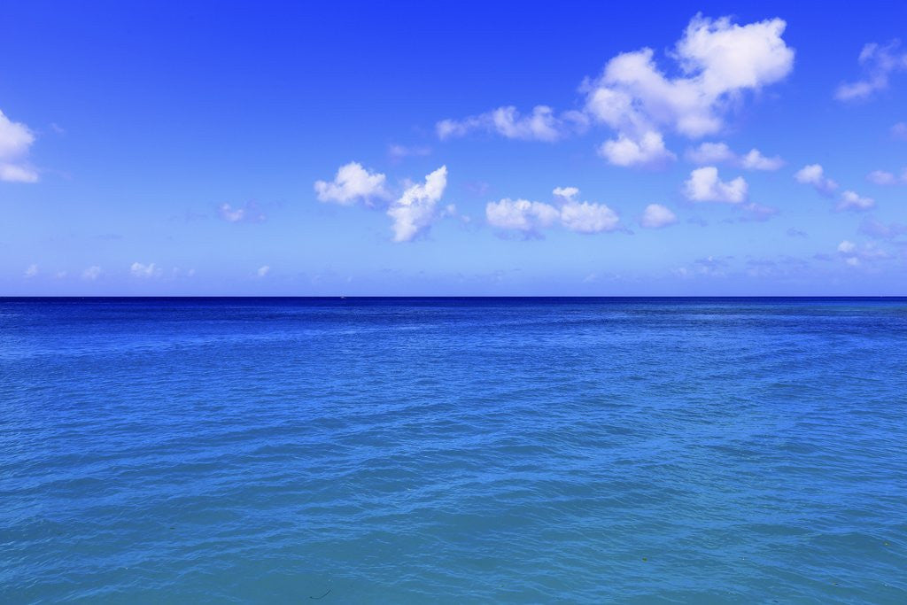 Detail of Caribbean Sea, West coast of Barbados by Corbis