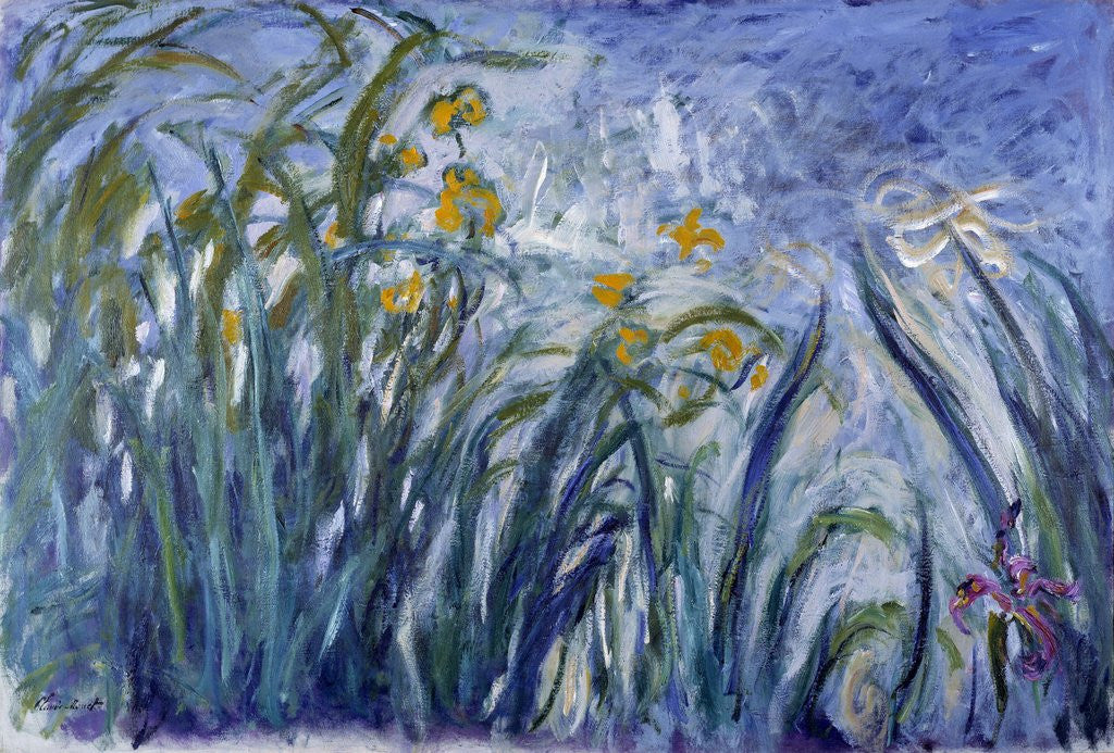 Detail of Iris by Claude Monet