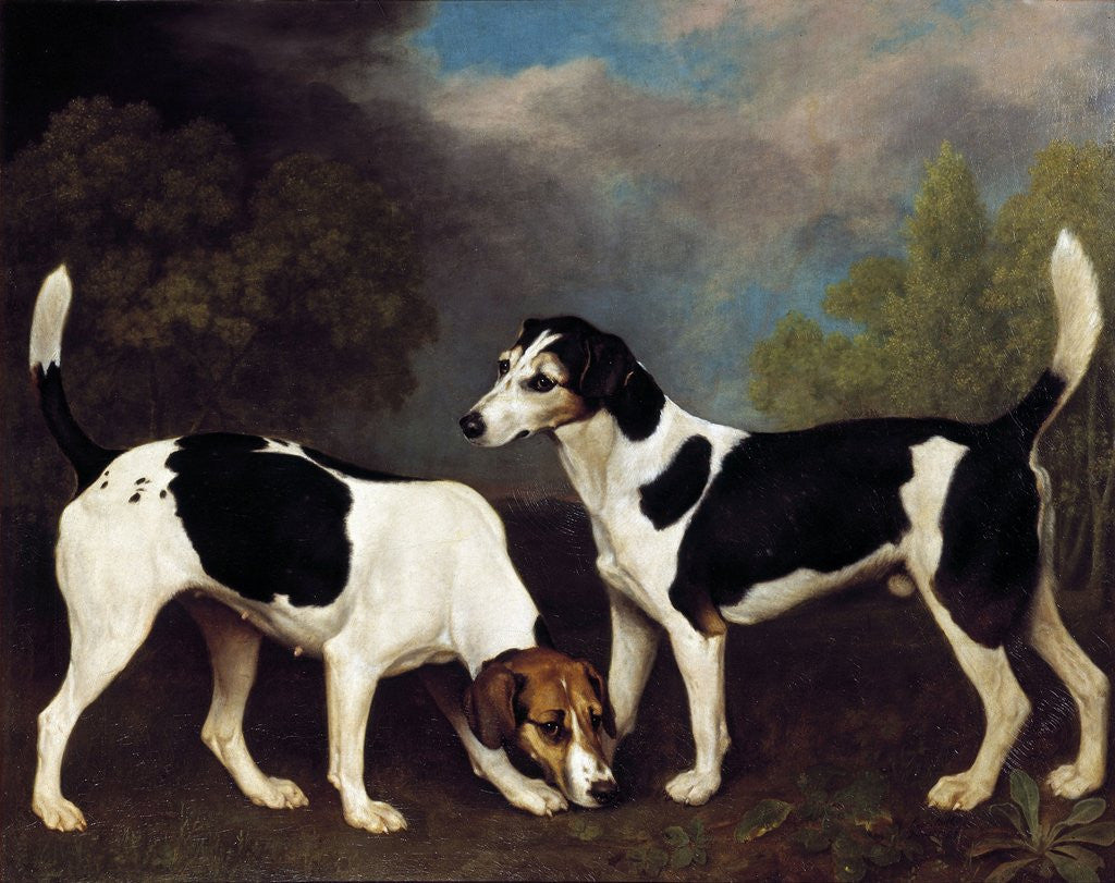 Detail of A Couple of Foxhounds by George Stubbs