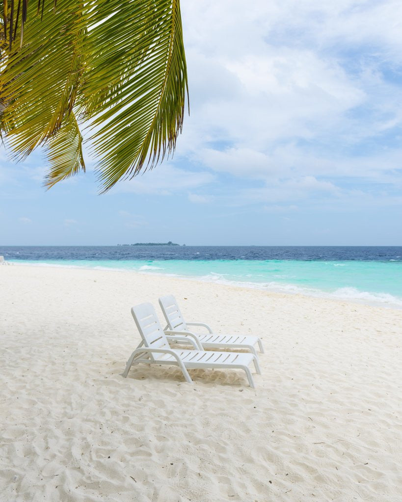 Detail of Idyllic Beach in the Maldives by Corbis