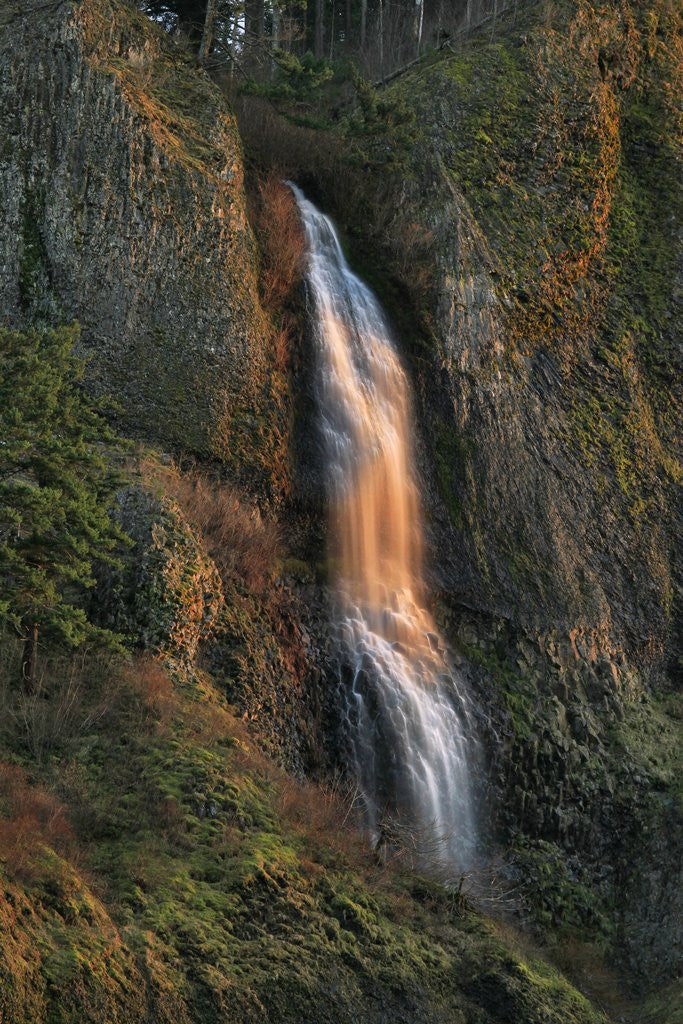 Detail of Evening light on Mist Falls by Corbis