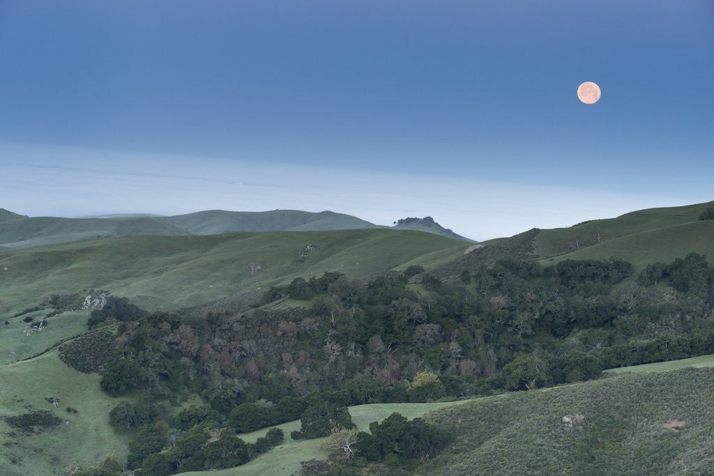 Detail of Full Moon Over the Central Coast by Corbis
