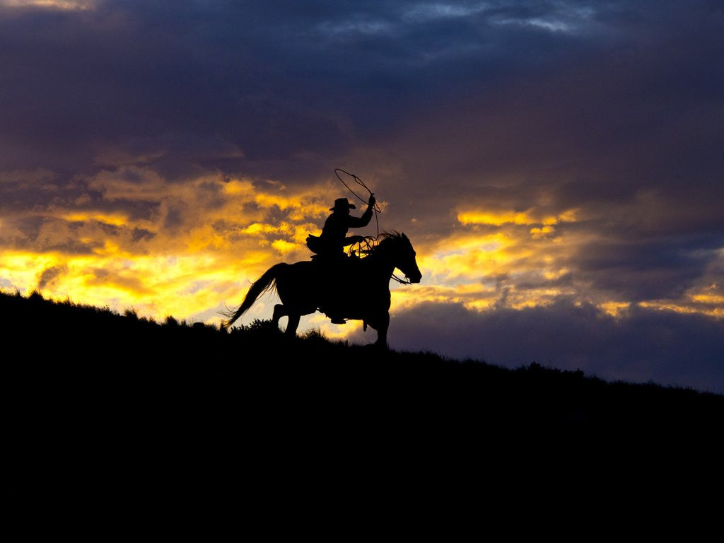 Detail of Cowboy in silhouette with sunset by Corbis