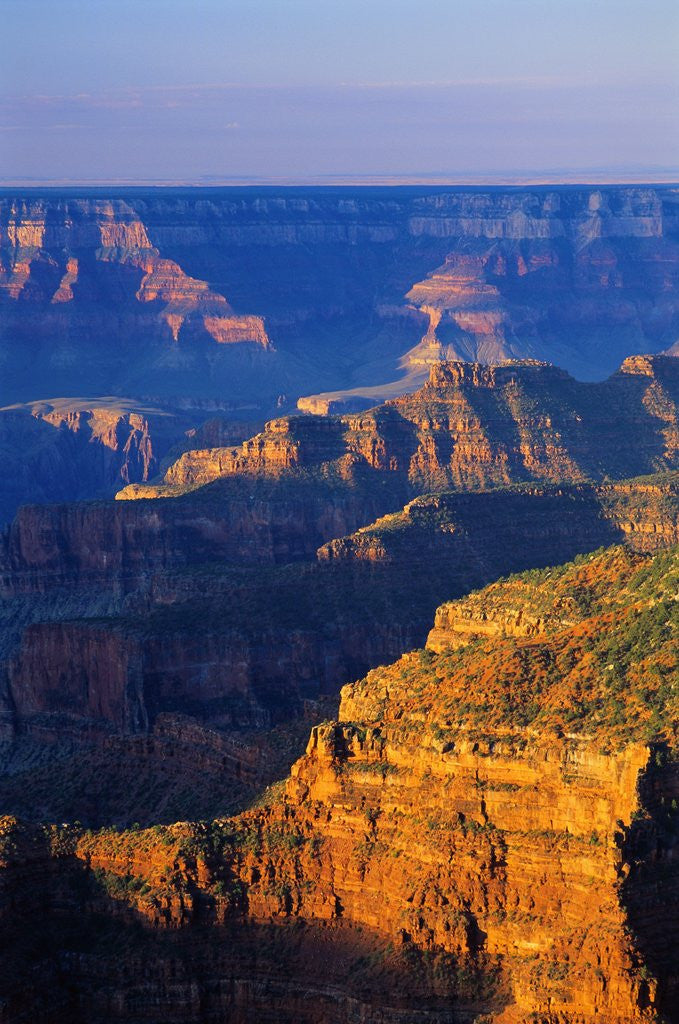 Detail of Bright Angel Trail by Corbis