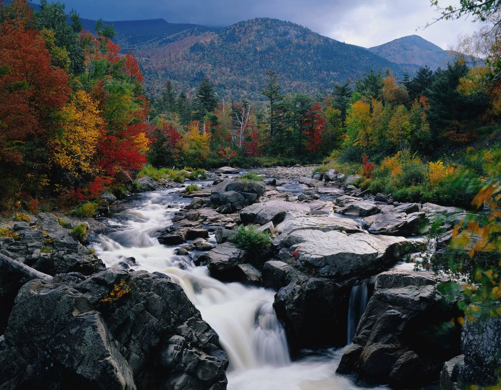 Detail of Cascades on Ausable River by Corbis
