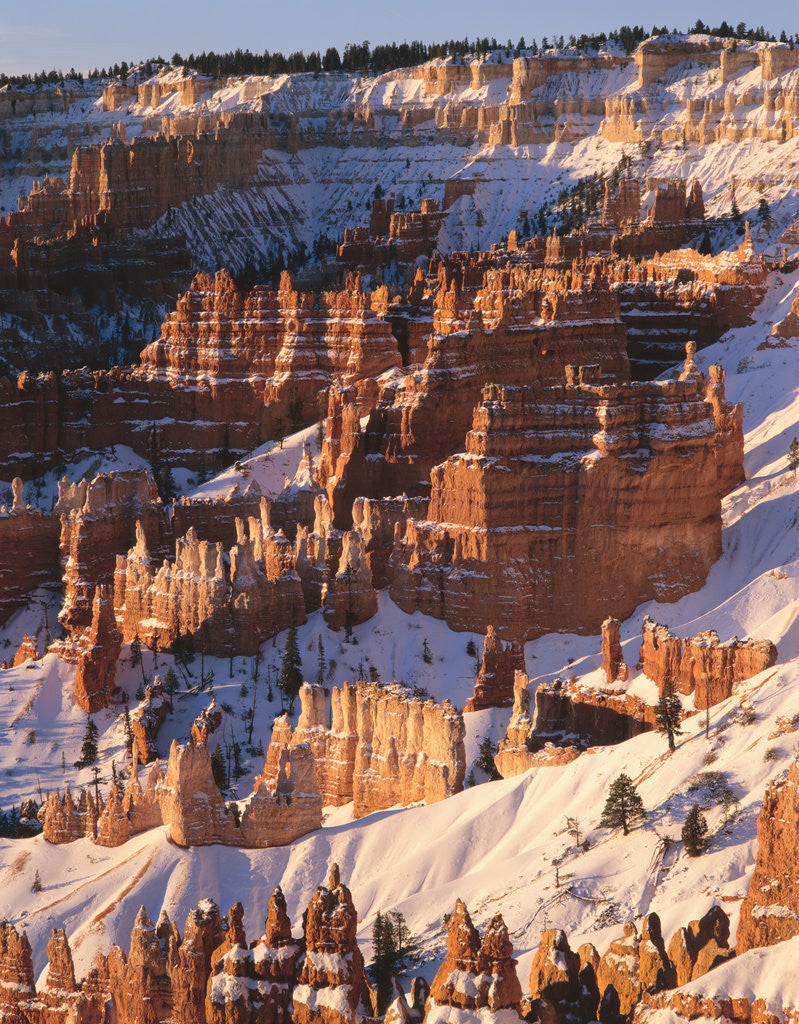 Detail of Bryce Canyon Amphitheater by Corbis