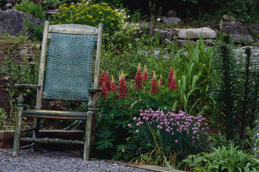 Detail of Old Chair in a Garden by Corbis