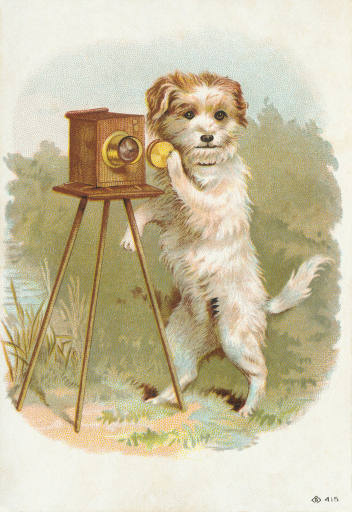 Detail of Trade Card of a Terrier Photographer by Corbis