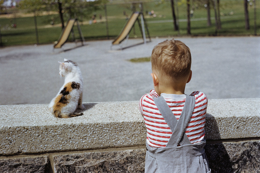 Detail of Boy Standing with Kitten in Schoolyard by Corbis