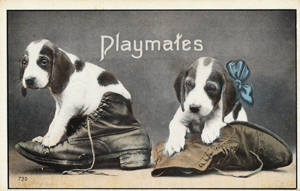Detail of Playmates Postcard by Corbis