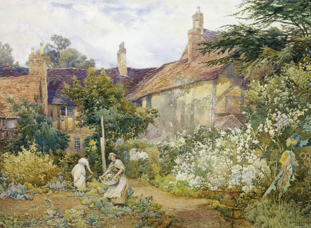 Detail of A Garden at Warwick by George Hodgson