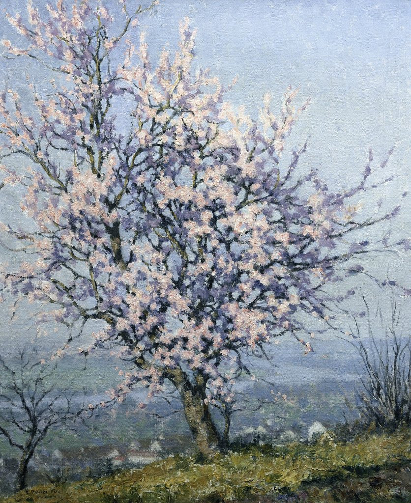 Detail of Spring by Emanuel Phillips Fox