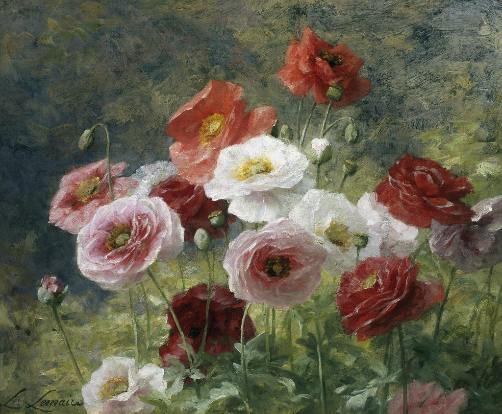 Detail of Poppies by Louis Marie Lemaire
