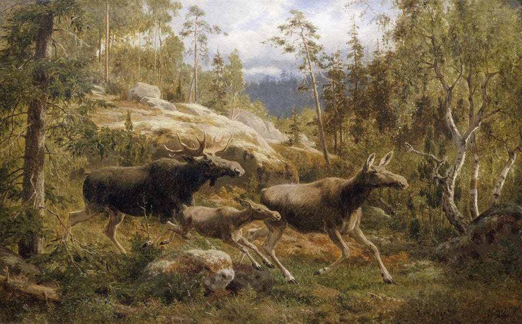 Detail of A Family of Moose by Carl Henrik Bogh