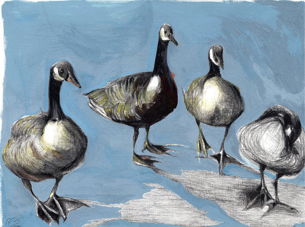 Detail of Friendly Canada Geese by Nancy Moniz Charalambous