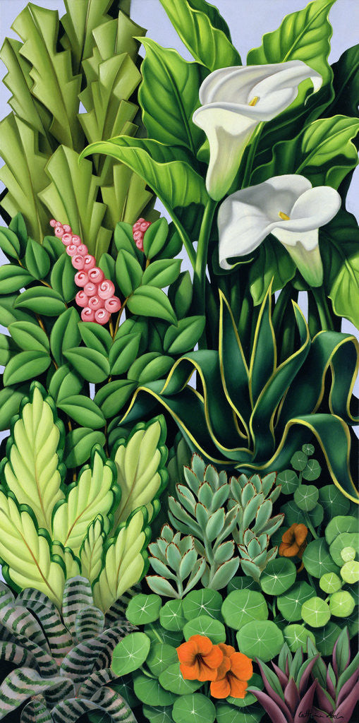 Foliage I Posters Amp Prints By Catherine Abel