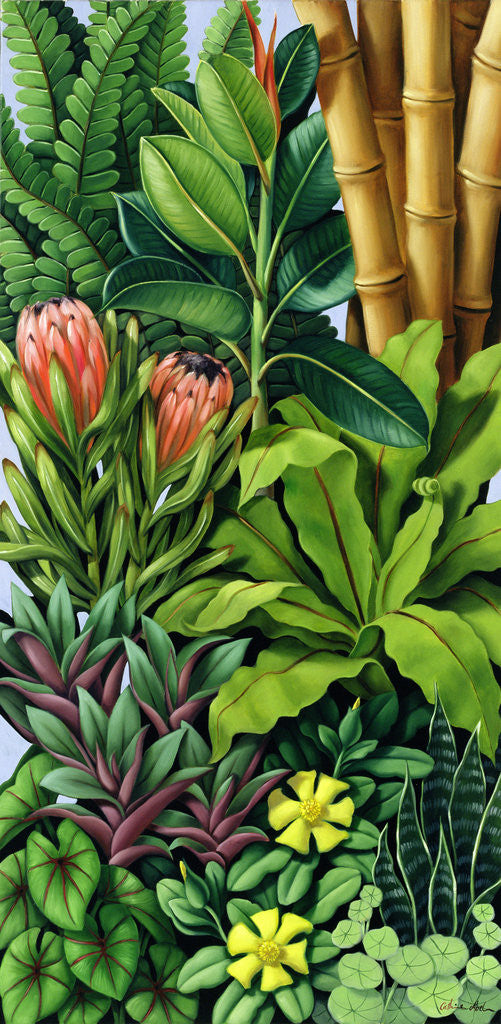 Detail of Foliage III by Catherine Abel