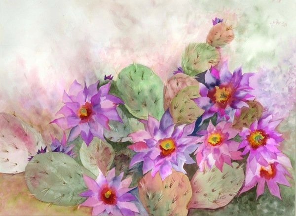 Detail of cactus garden by Neela Pushparaj