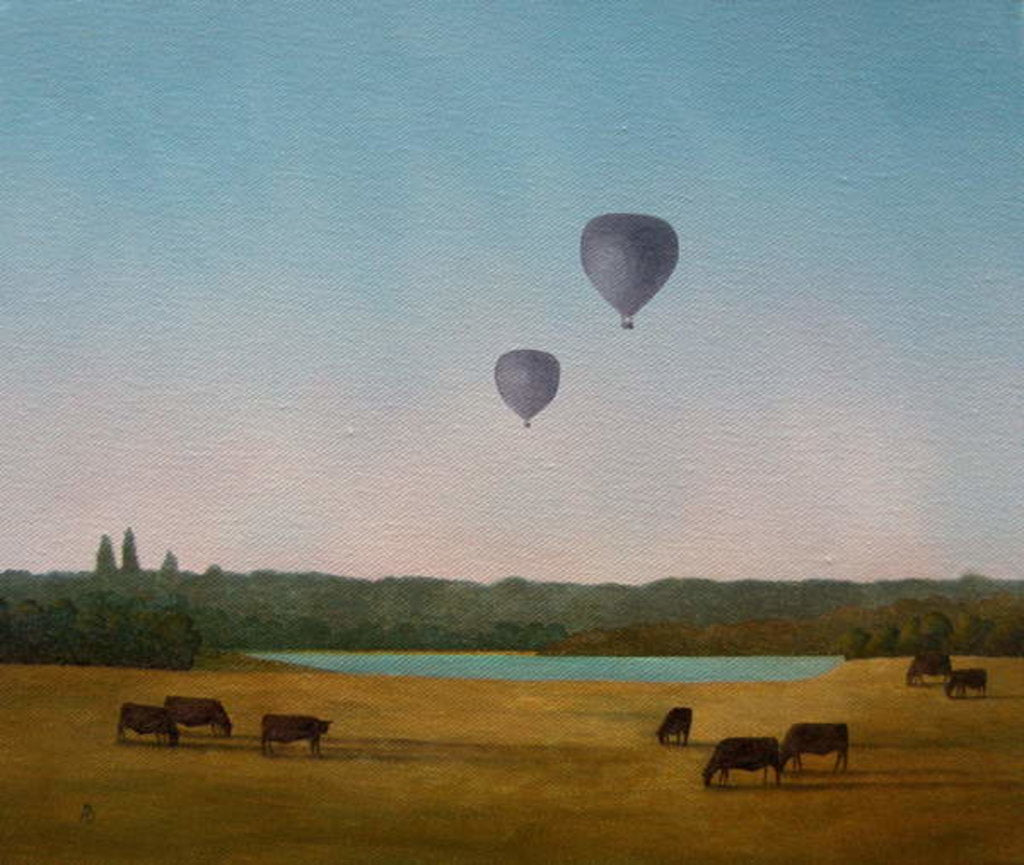 Detail of Northamptonshire Balloons, 2005 by Ann Brain
