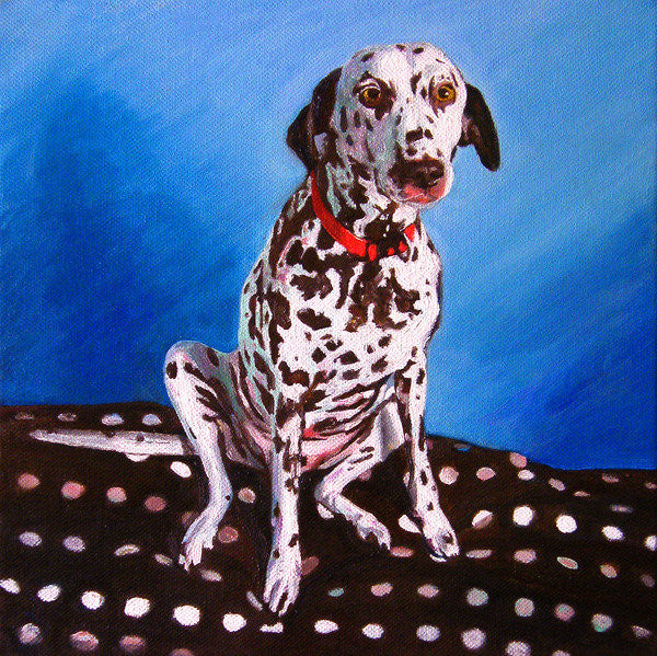 Detail of Dalmatian on spotty cushion by Helen White