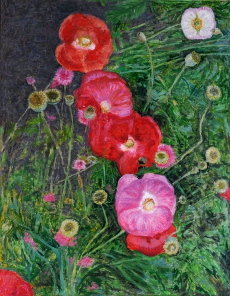 Detail of Poppies by Ruth Addinall