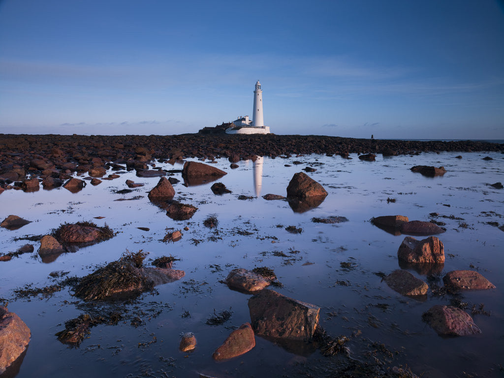 Detail of St Mary's lighthouse, over rocky shoreline by Assaf Frank
