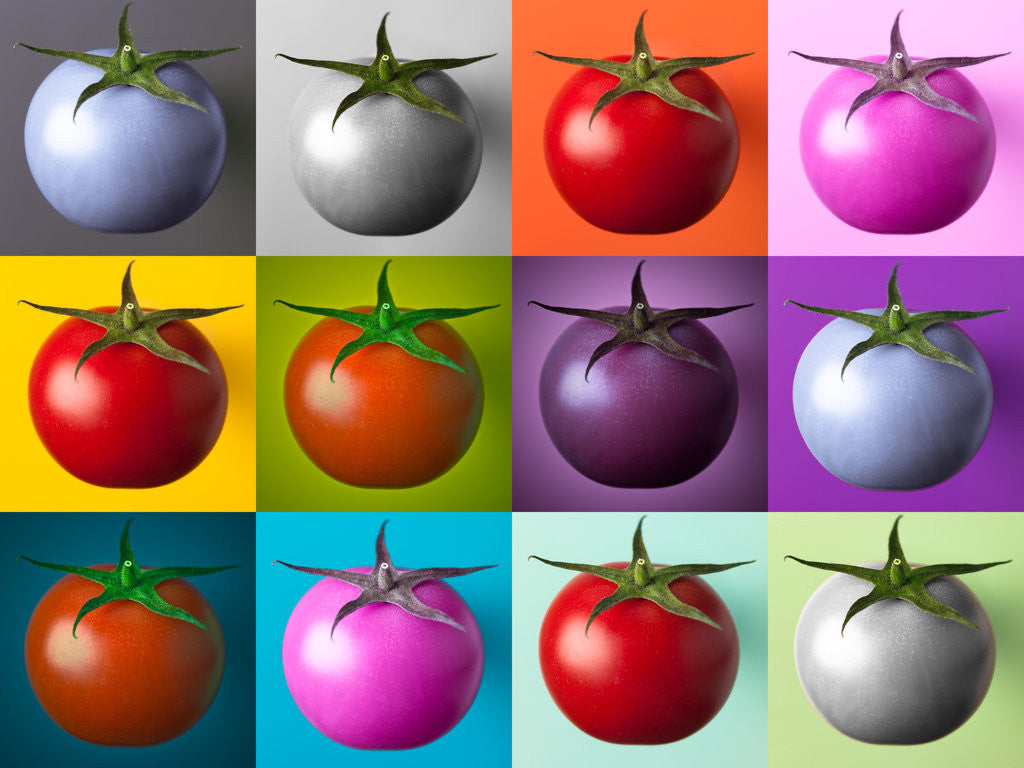 Detail of Multi coloured tomatos by Assaf Frank