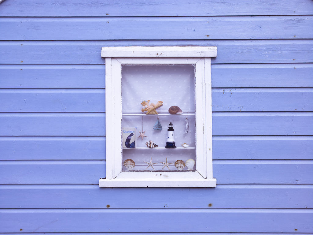 Detail of Beach hut window close-up by Assaf Frank