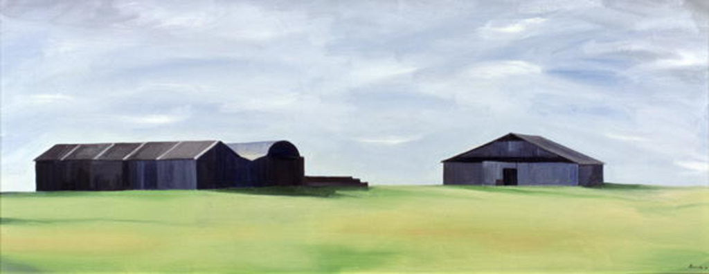 Detail of Summer Barns by Ana Bianchi