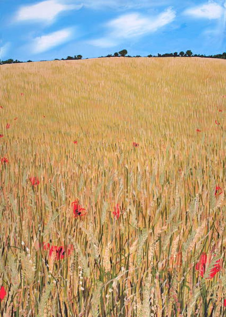 Detail of Wheatfield, 2015 by Faisal Khouja