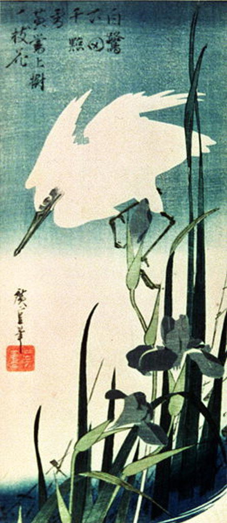 Detail of White Heron and Iris by Ando or Utagawa Hiroshige