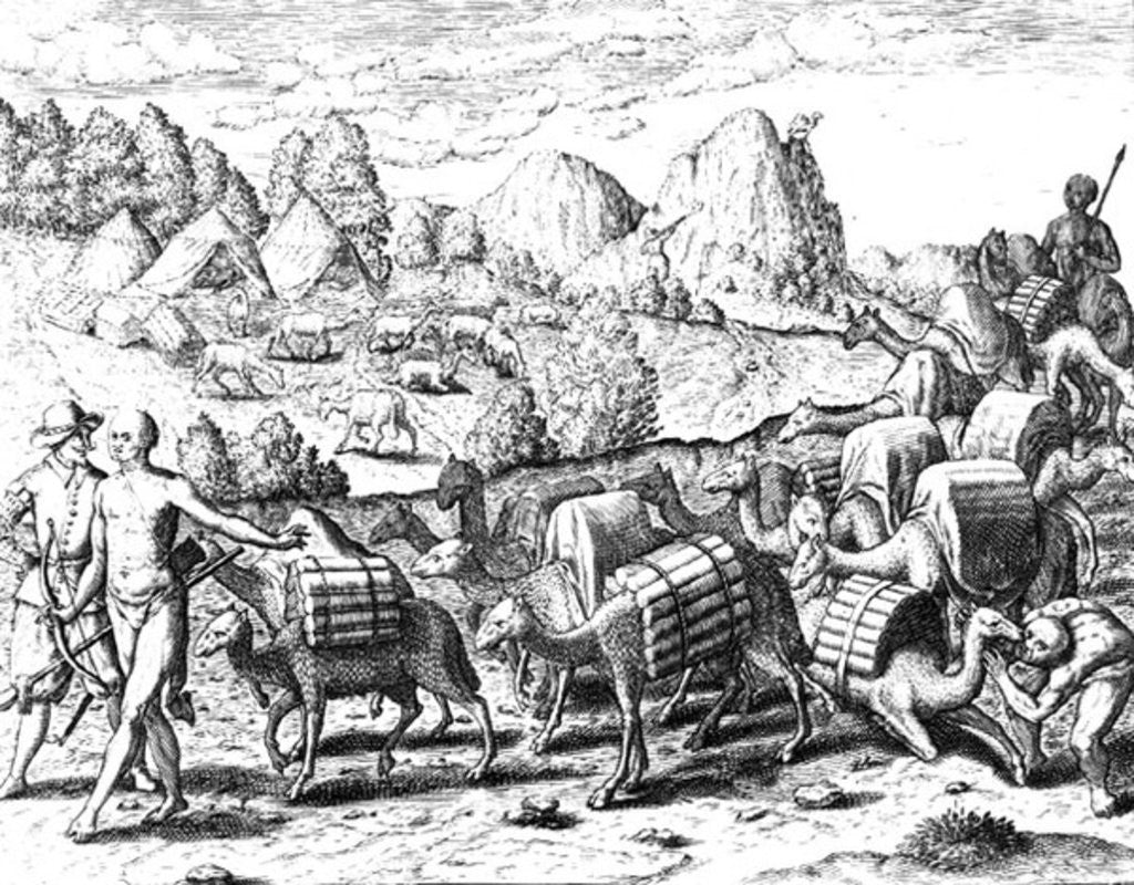 Detail of Pack Train of Llamas Laden with Silver from Potosi Mines of Peru, engraved by Theodore de Bry by Jacques Le Moyne