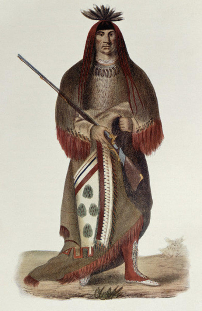 Detail of Wa-Na-Ta or 'The Charger', Grand Chief of the Sioux or Dakota Indians by Charles Bird King