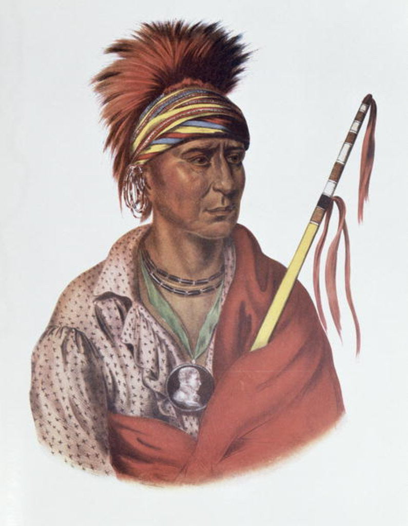 Detail of Notchimine or No Heart, an Iowa Chief by Charles Bird King