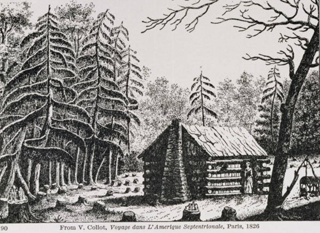 Detail of A frontier cabin by American School